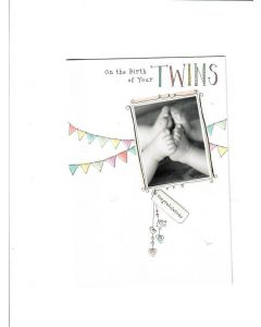 on your birth of your twins congratulations Card