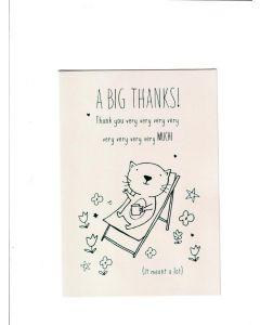 a big thanks thank you very very very very very very very very much Card