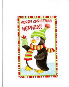 merry christmas nephew Card