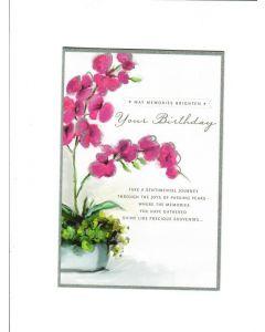 may memories brighten your birthday Card