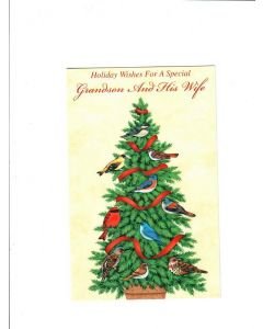 Holiday Wishes For A Special Grandson And His Wife Card