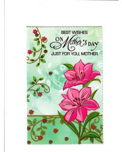 Best wishes on your Mothers day Just for you Mother Card