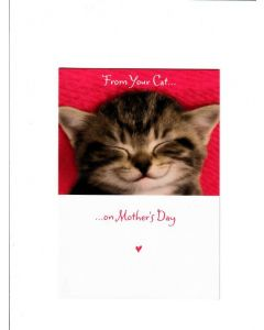 From your cat on mothers day Card