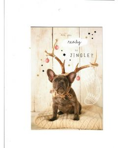 friend just thanking my lucky snowflakes Card 190mm x 130mm [PACK OF 6]