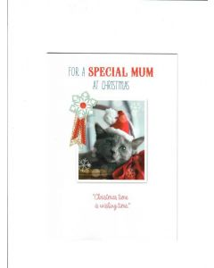 for a special mum at christmas christmas time is wishing time Card