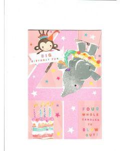 big birthday fun LGS1920 Card 195mm X 130mm