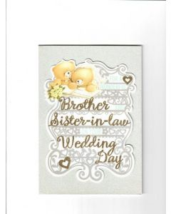 for a wonderful brother and sister-in-law on your wedding day Card