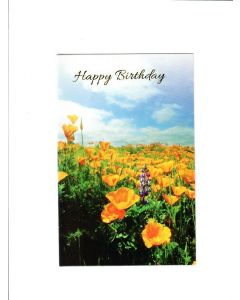 Happy Birthday Card - Stay Happy