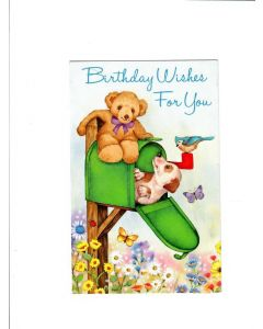 Birthday wishes for you Card -  Dog and Teddy Playing