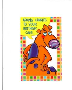 Adding candles to your birthday cake Card
