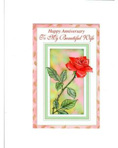 Warmest wishes on your birthday Card - With Rose