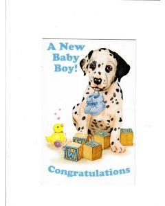 A New Baby Boy Card - Congratulations
