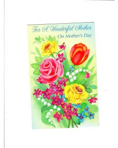 for a wonderful mother on mothers day Card