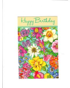 hapy birthday Card