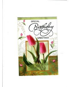 special birthday greetings Card