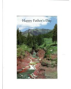 Happy Fathers Day Card - From Son