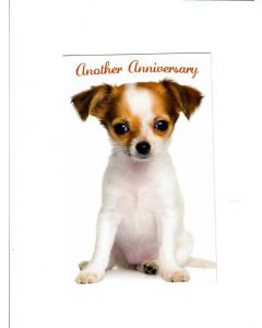 another anniversary Card