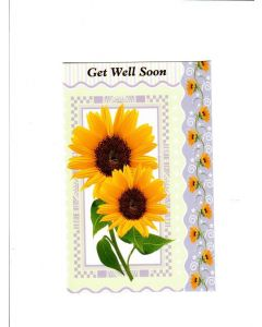 Get Well Soon Card - A beautiful Sunflower