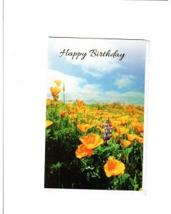 Happy Birthday Card - Sending you Warm Wishes