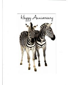 Happy Anniversary Card - From Zebra