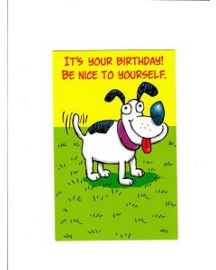 its your birthday be nice to yourself Card