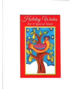 Holiday Wishes For A Special Son And His Wife Card